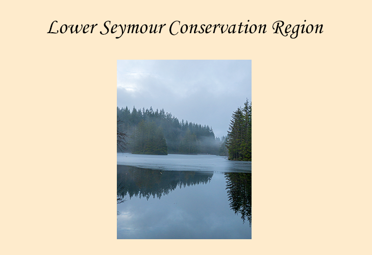 Photographs of Lower Seymour Conservation Region, British Columbia.